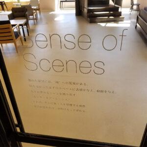 sense of senses